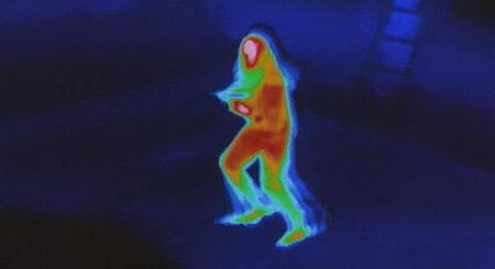 predator heatmap