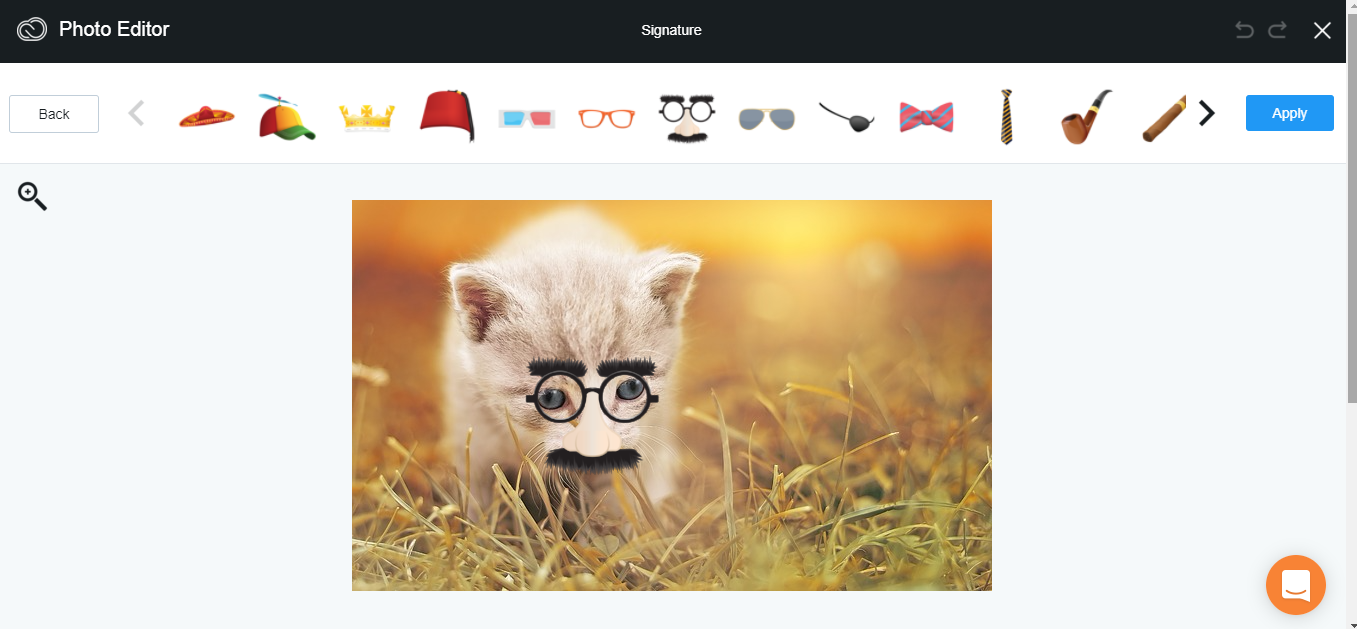 funny cat with mustache and glasses