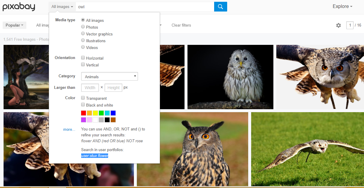 pixabay search options
