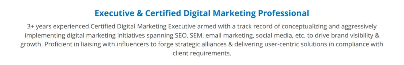digital-marketing-resume-summary
